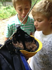 boys boarding school students discover birds nest